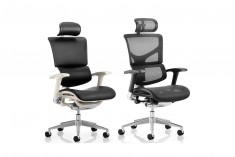 Ergo Dynamic Posture Chair