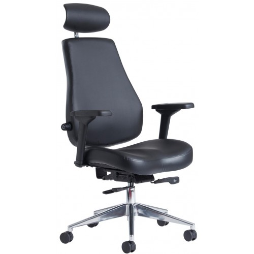 Fareham Posture 24hr Ergonomic Chair