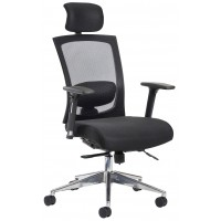 Gosport Posture Mesh Ergonomic Office Chair