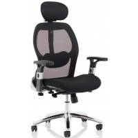 Sanderson Mesh Posture Lumbar Support Chair