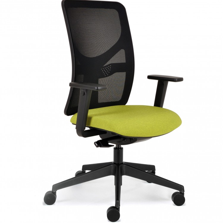 Bespoke Ergonomic Chairs