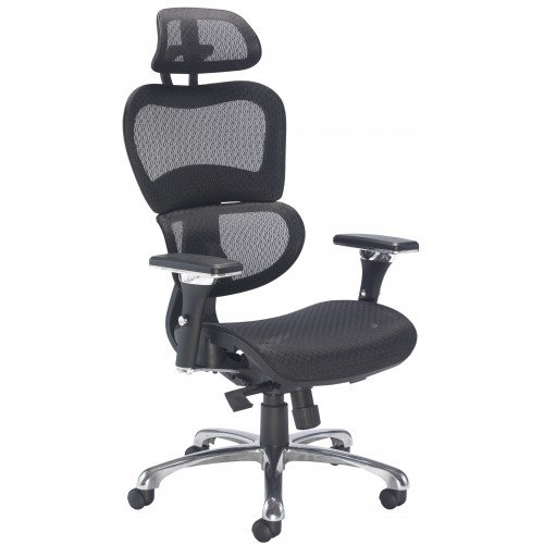 Chachi Mesh Posture Office Chair