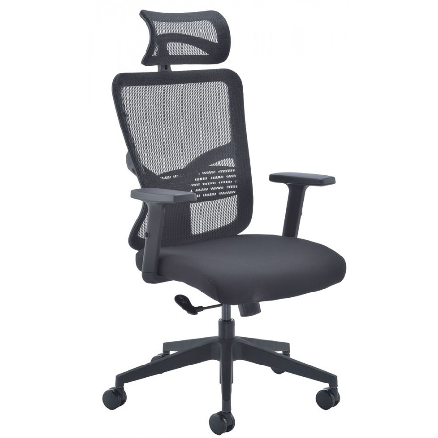 Kempes Mesh Executive Office Chair